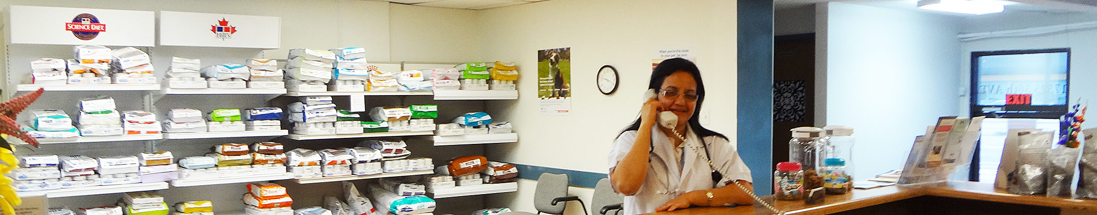 Dr Renu Sood speaking with a client at Apollo Vets in Surrey
