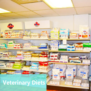 Veterinary Diets at Apollo Animal Hospital